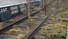 Re-installed High Line rails and plantings